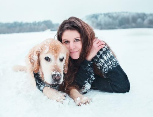 Pets #15
