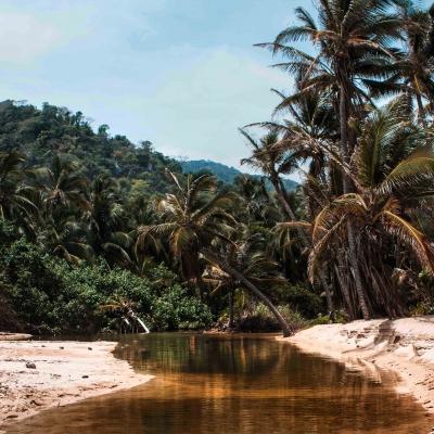 homepagecolombia (38 von 76)